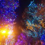 幸せなクリスマス&年末年始を〜(*^^*)✨感謝♪